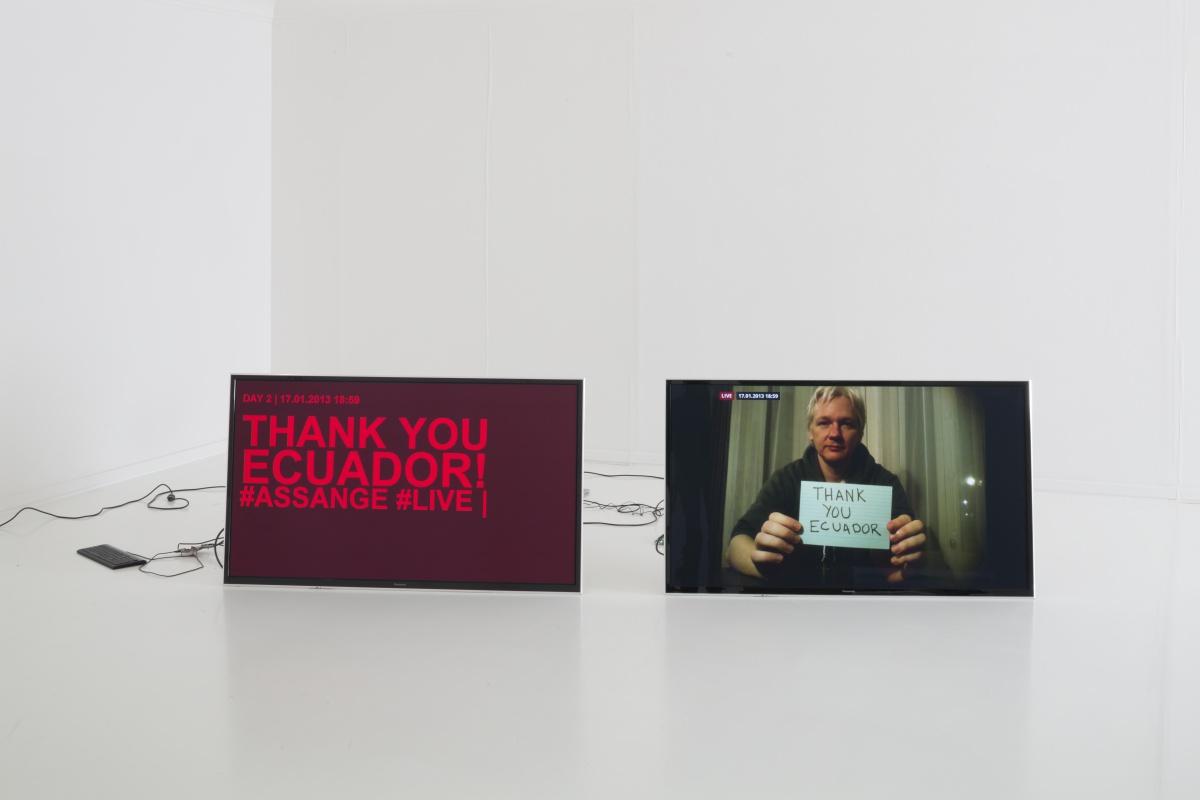 Delivery for Mr. Assange, Helmhaus Zurich, 2014. Cortesía: Helmhaus Zurich, Mancia/Bodmer, FBMstudio Inéditos