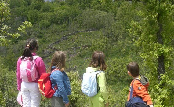 Niños disfrutando del Hayedo de Montejo