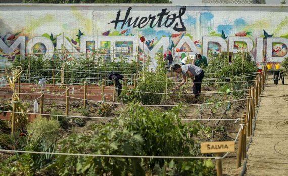 Huertos Montemadrid. Foto de @mjberrocal